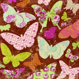K&Co Madeline Butterfly Paper