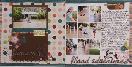 Flood Adventures image